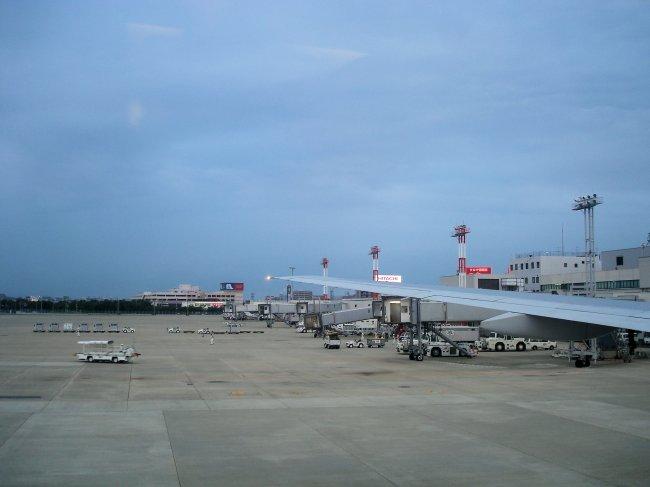 http://www.thevital.net/udo/Japan2007/FUKHND/JL334.wing.jpg